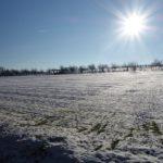 """""""Schnee von gestern?"""" - Herbert Hennes"""