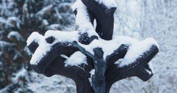 """""""Jakobskreuz im Winterkleid"""" - Foto Herbert Hennes"""